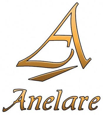 2016topwineclub-logo-anelare